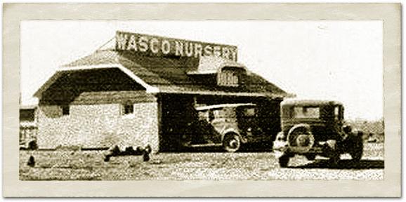 History - Wasco Nursery